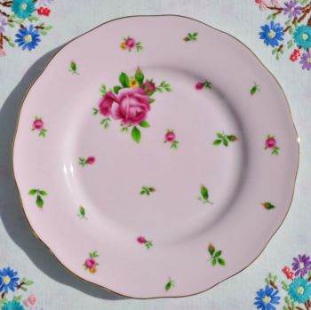 Royal Albert New Country Roses 20cm plate