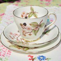Adderley Bramble Blossom Teacup Trio
