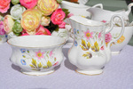 Richmond 'Wild Anemone' Vintage Bone China Milk Jug and Sugar Bowl