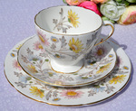 Foley Vintage China 'Somerset' Teacup Trio c.1950's