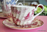 Pink Toile de Jouy Bone China Teacup and Saucer