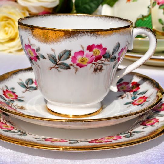 Salisbury Wild Pink Rose Vintage Teacup, Saucer and Tea Plate Trio with Spo