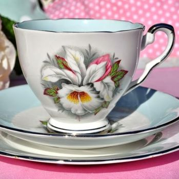 Royal Stafford White Lady Pale Blue and Platiunum Vintage Teacup Trio