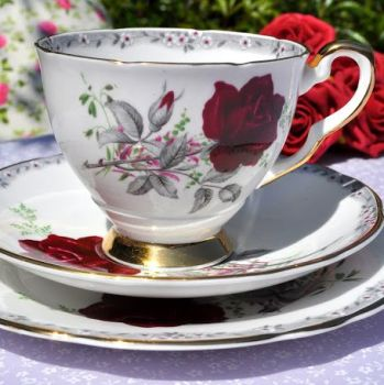 Royal Stafford Roses To Remember Vintage China Teacup Trio