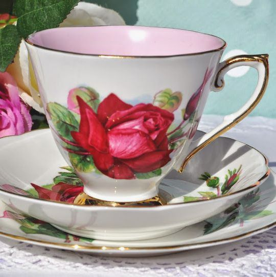 World Famous Roses Grand Gala Pattern Vintage China Teacup Trio c.1960's