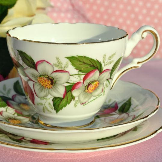 Regency Vintage English Bone China Breakfast Teacup Trio c.1950's