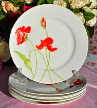 Aynsley Meadow Pattern Set of Six 20.5cm Bone China Plates