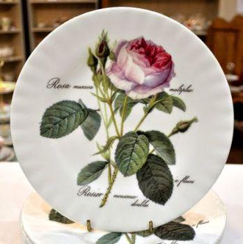 Roy Kirkham Redoute Rose New Fine China 20cm Plate