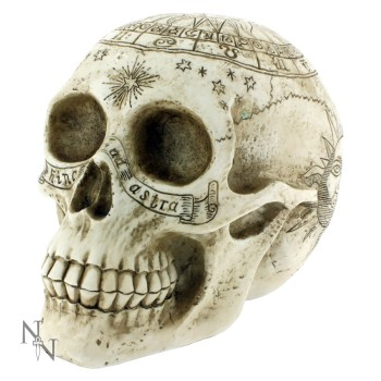 Astrological Skull