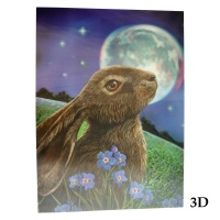 Moon Gazing Hare 3D Picture By Lisa Parker