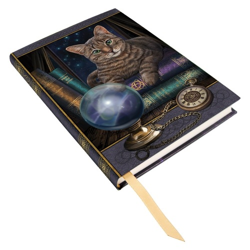 Fortune Teller Embossed A5 Journal By Lisa Parker