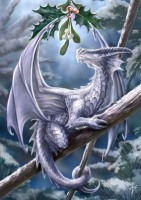 Snow Dragon By Anne Stokes
