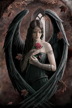 Angel Rose Greeting Card By Anne Stokes