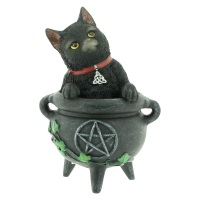 Smudge - Cats of the Coven