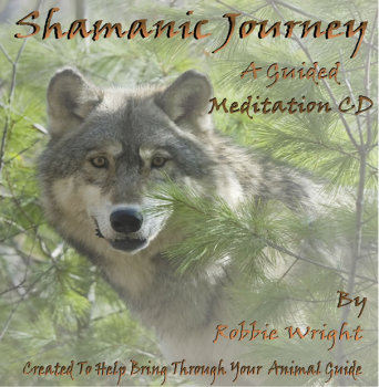 Shamanic Journey By Robbie Wright
