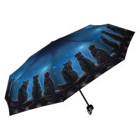 Wish Upon a Star By Lisa Parker Umbrella