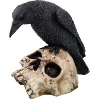 Ravens Remains