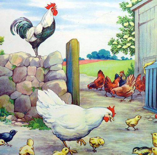 Vintage School Poster 1938 - The Hen & Her Chicks