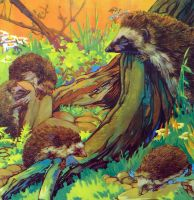 Vintage School Poster 1938 - Hedgehogs & Dormice