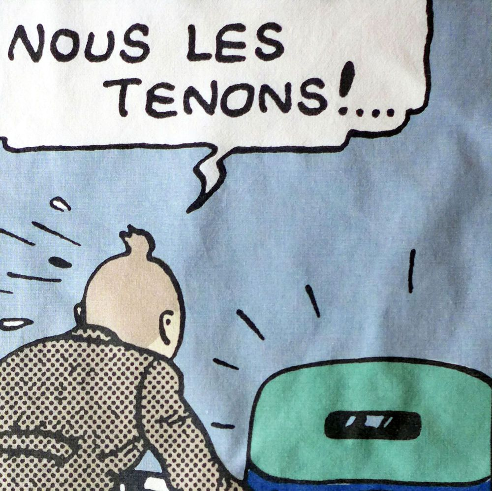 Tintin Fabric Panel - Tintin & Car - 21cm x 40cm - Blue or Taupe
