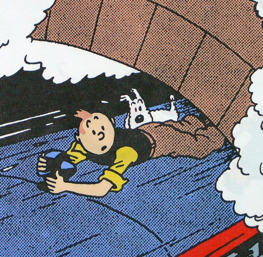 Tintin Cotton Panel - The Black Isle - Tintin Holds On