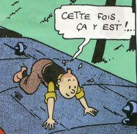 Tintin Cotton Panel - The Black Isle - Tintin Lands