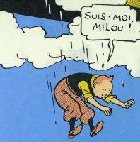 Tintin Cotton Panel - The Black Isle - Tintin Jumps