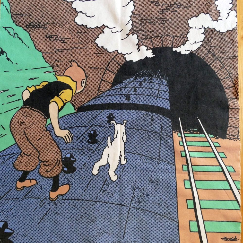 Tintin on the Train Panel - 55cm x 60cm