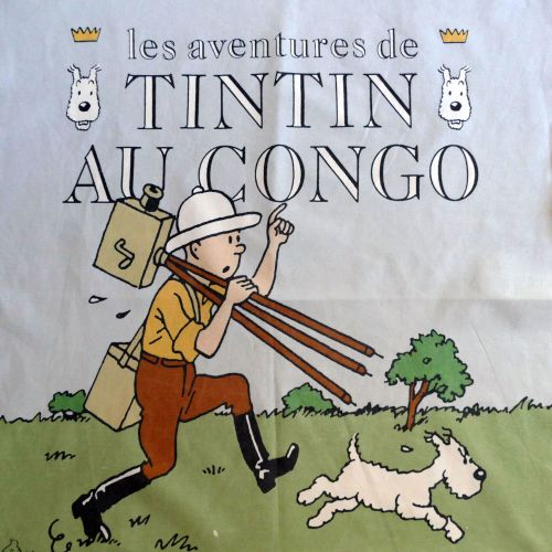 Tintin in the Congo Panel - 50cm x 60cm