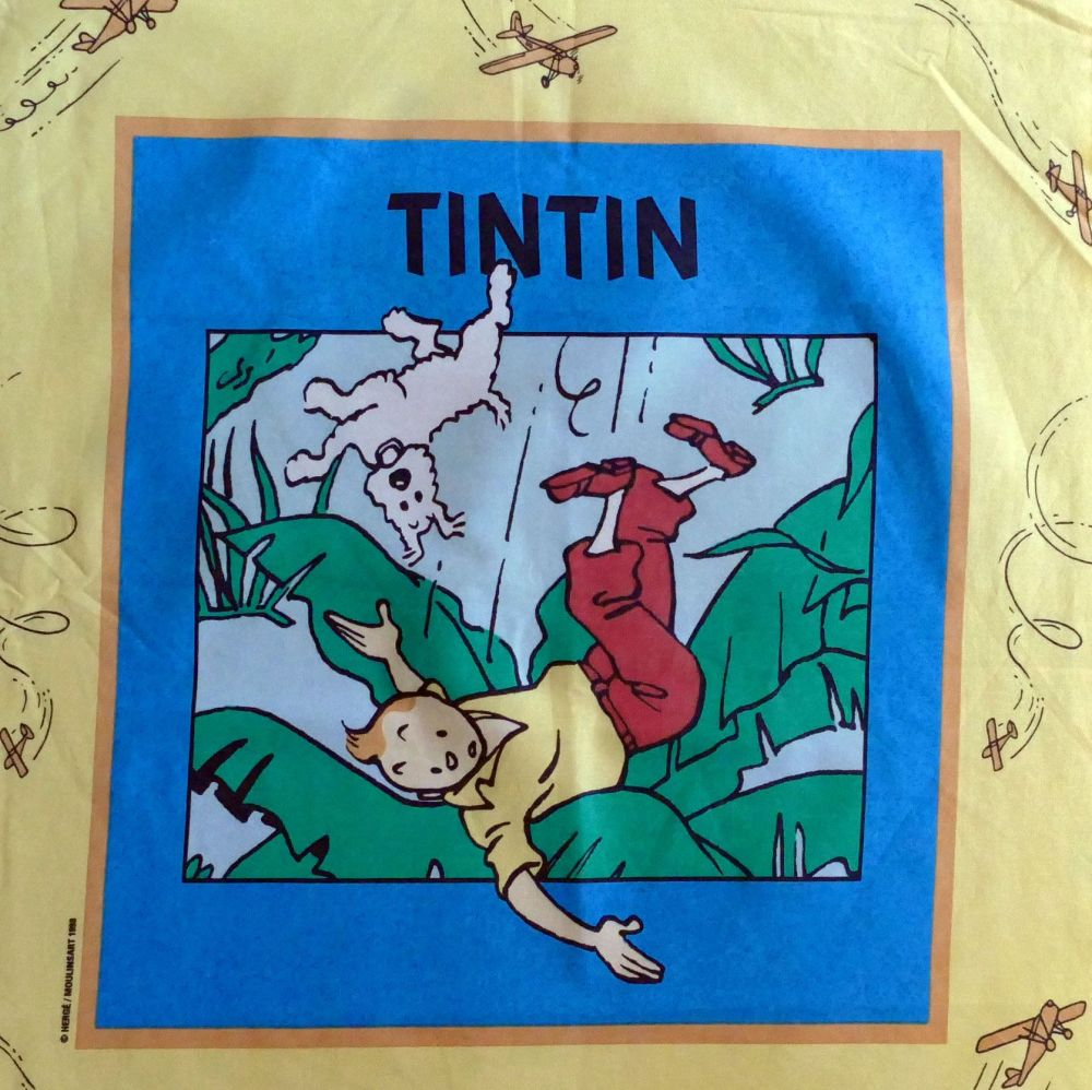 Tintin Cigars of the Pharaoh Panel - 50cm x 60cm