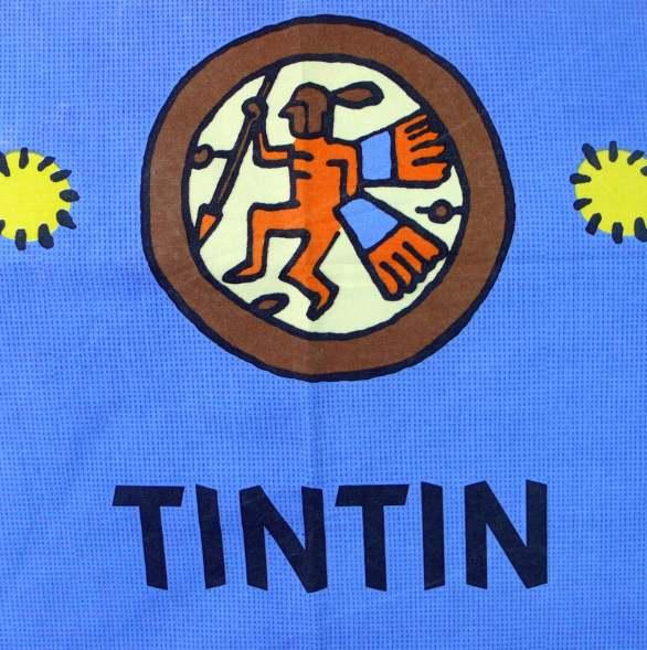tintin-lrg-fabric-panel-7-4