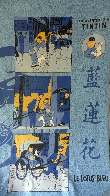 tintin-blue-lotus-panel-2