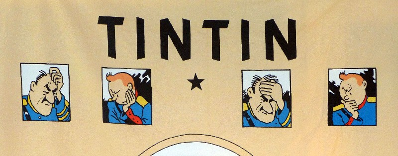 large-tintin-panel-3