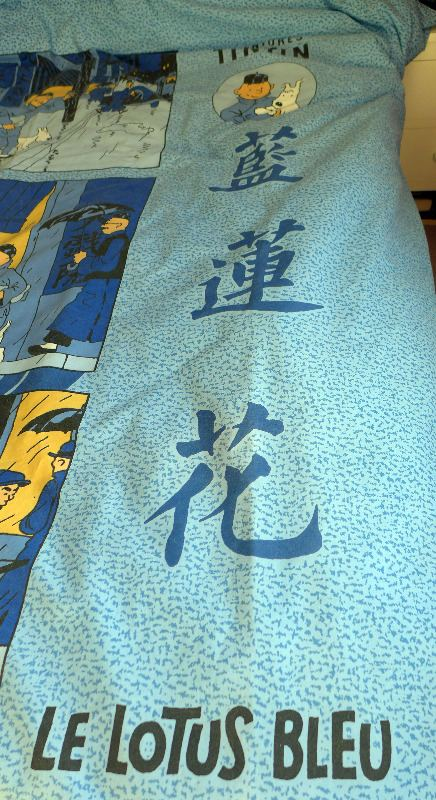 tintin-double-duvet---china-8