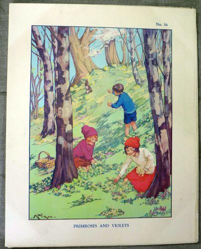 Vintage School Poster 1930's/40's - Primroses & Violets