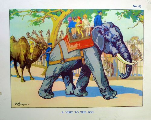 Vintage School Poster 1938 - A Visit to the Zoo
