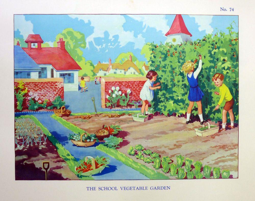 Vintage School Poster 1938 - The School Vegetable Garden