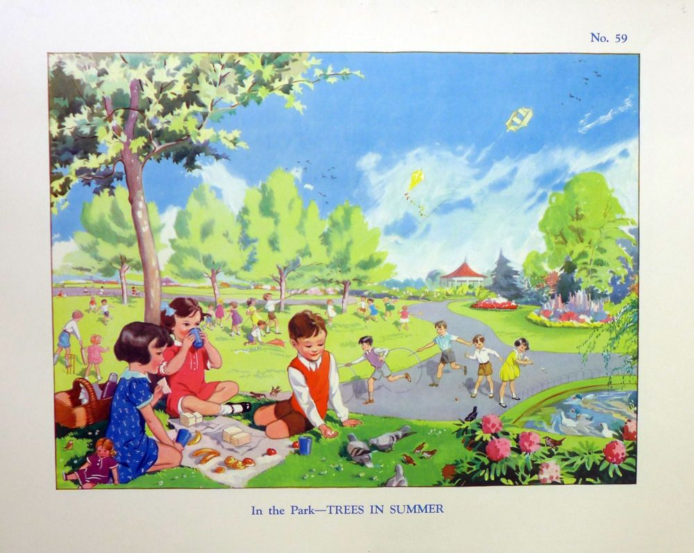 Vintage School Poster 1938 - Trees in Summer