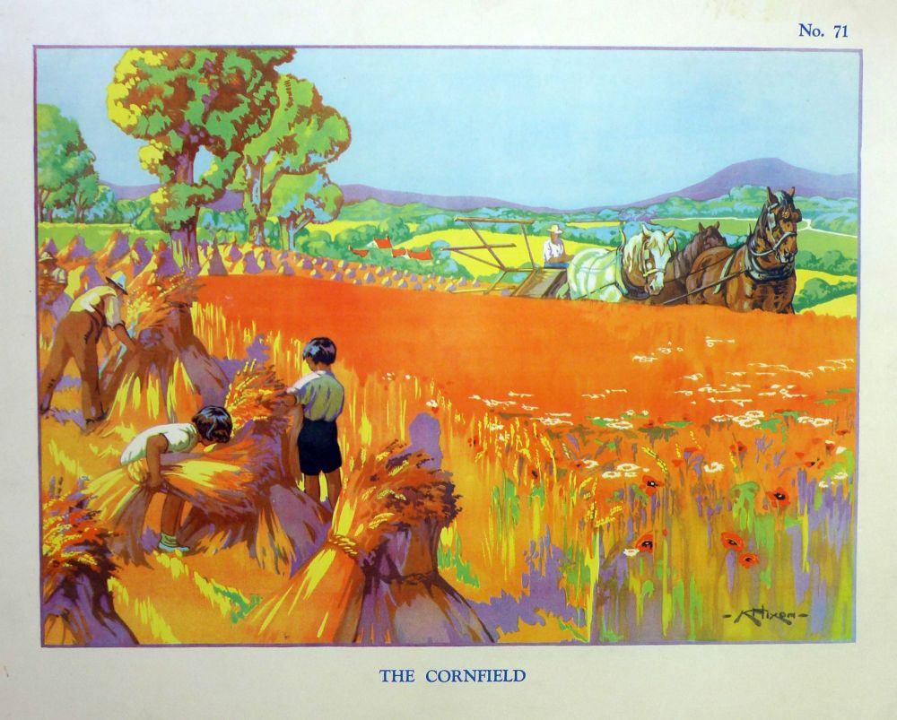 Vintage School Poster 1938 - The Cornfield