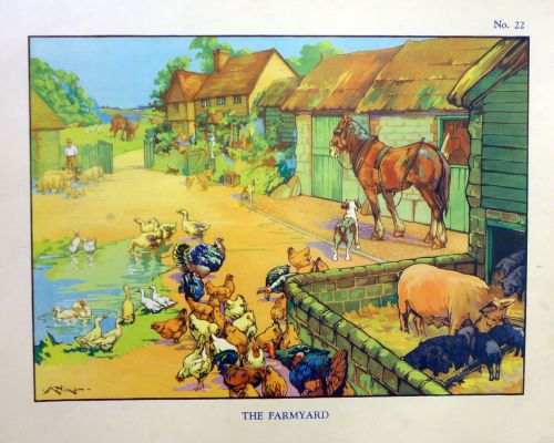 Vintage School Poster 1938 - The Farmyard