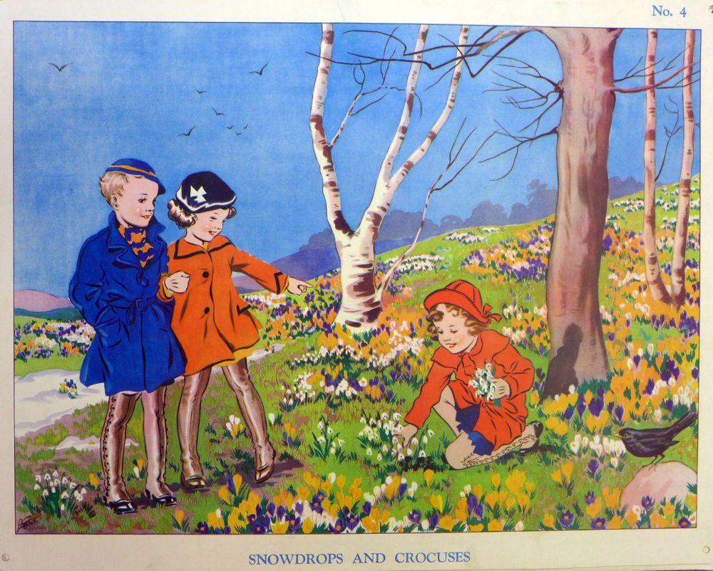 Vintage School Poster 1938 - Snowdrops & Crocuses