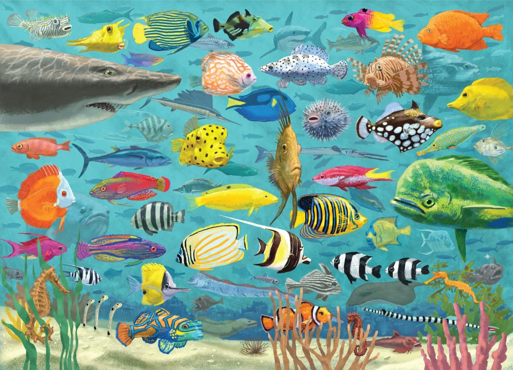 All The Fish Jigsaw Puzzle