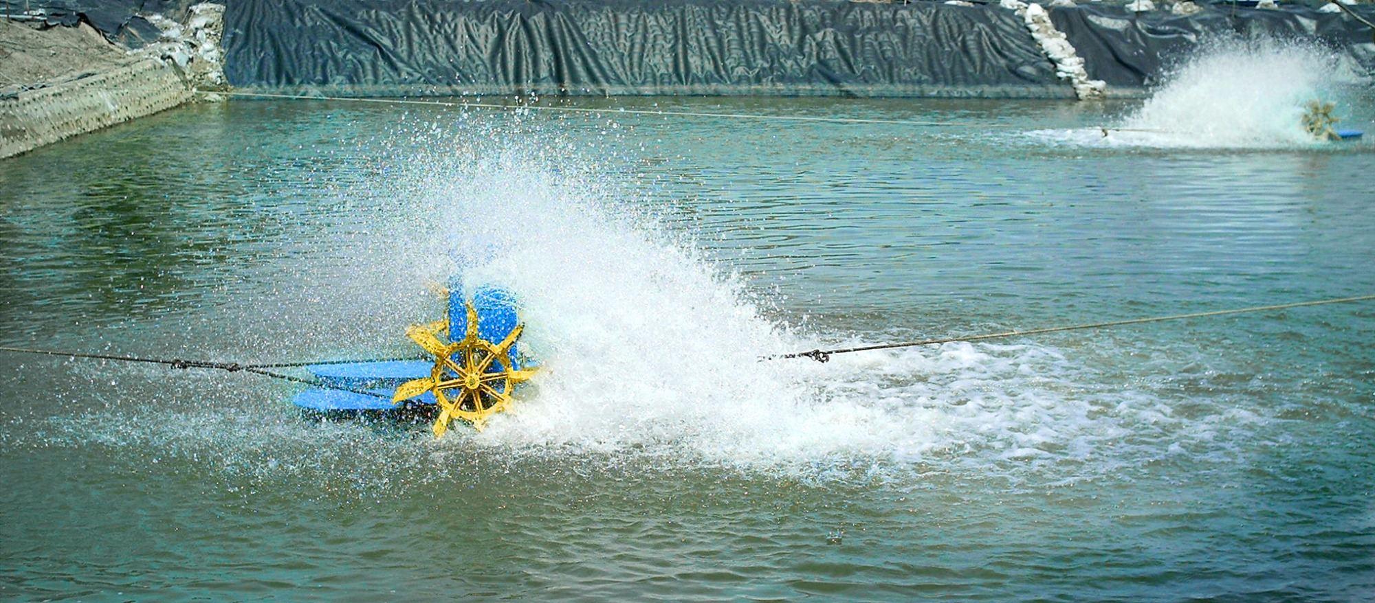paddlewheel in operation