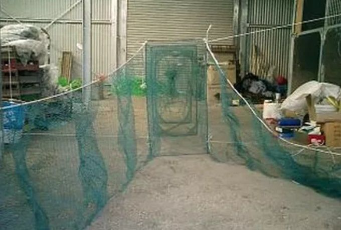 Custom Sports and Pet Nets Western Australia