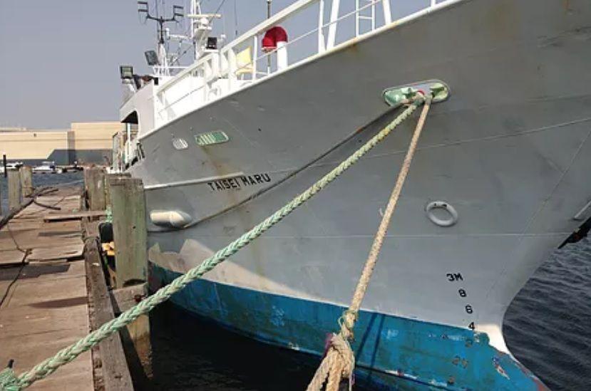 Fishing Equipment Wholesalers Australia