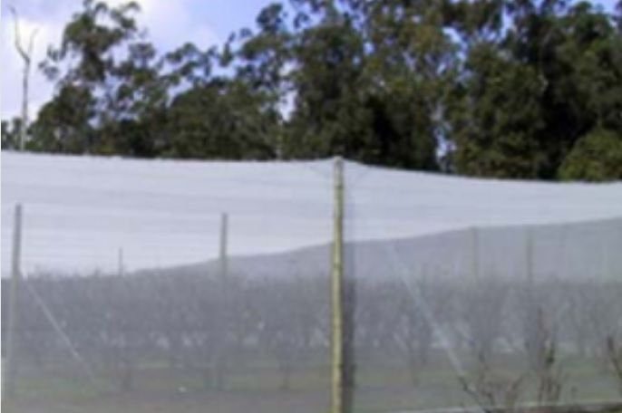 Insect Netting and Veggie Nets For Sale Australia