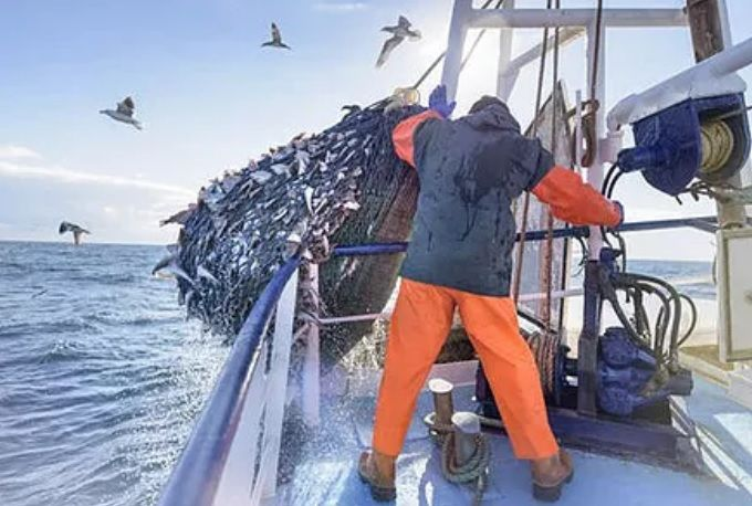Commercial Fishing Clothing and Workwear Western Australia