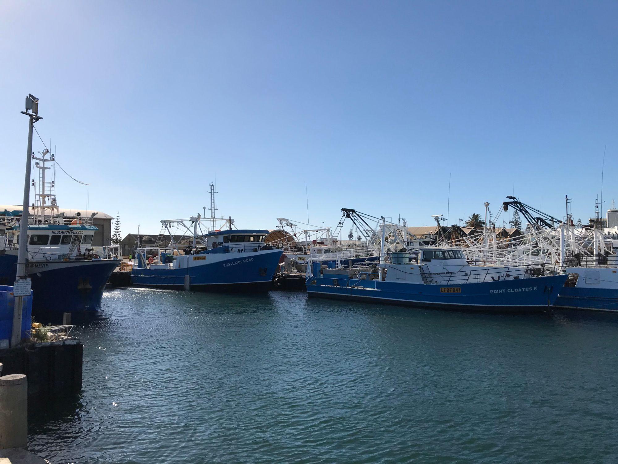 Netting and Fishing Equipment Shop Western Australia