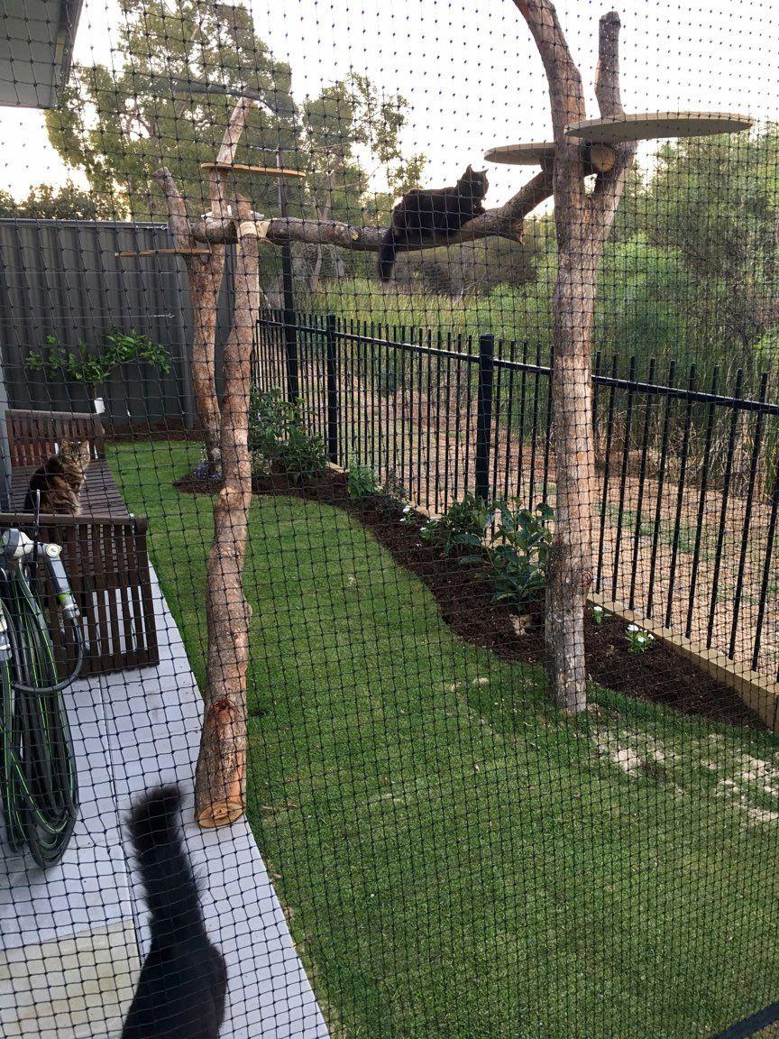 Cat Nets Australia