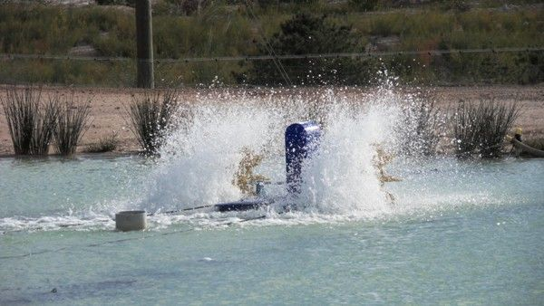 Aeration Pumps, Waterlifts, Splashers and Venturi For Sale in Perth, Western Australia
